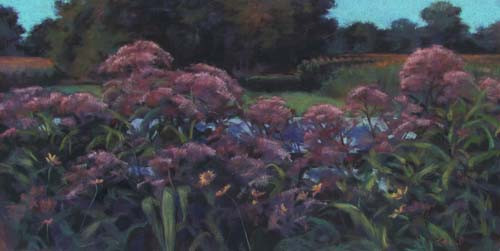 Field, Fence and Flowers<br /><small>pastel     16 1/2 x 33 1/4      $2900</small>