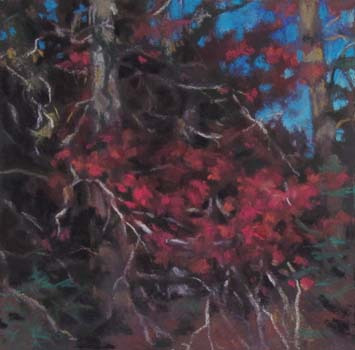 Red Tangle<br /><small>pastel     6 x 6      $425</small>